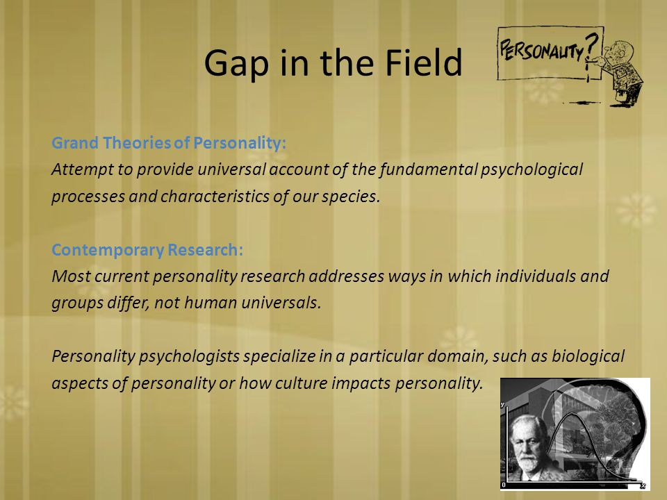 Gap in the Field Grand Theories of Personality: Attempt to provide universal account of the fundamental psychological processes and characteristics of our species.