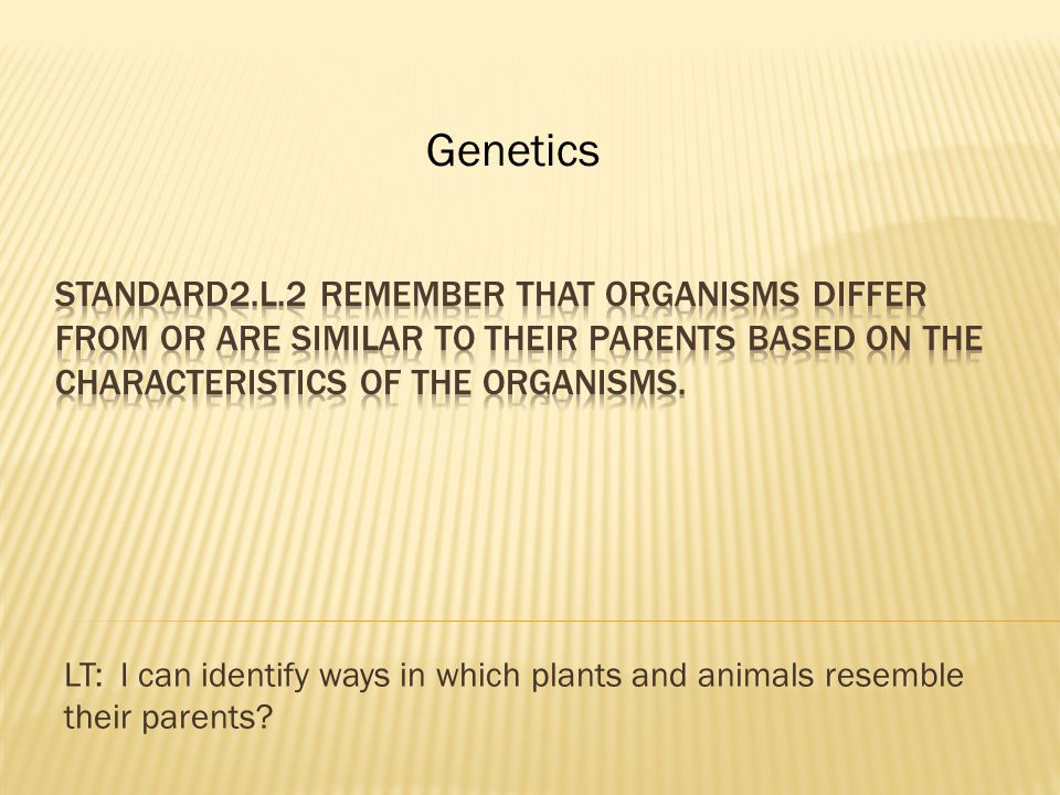 LT: I can identify ways in which plants and animals resemble their parents Genetics