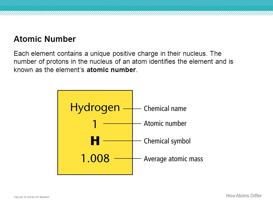 Atomic Number Each element contains a unique positive charge in their nucleus. The number of protons in the nucleus of an atom identifies the element