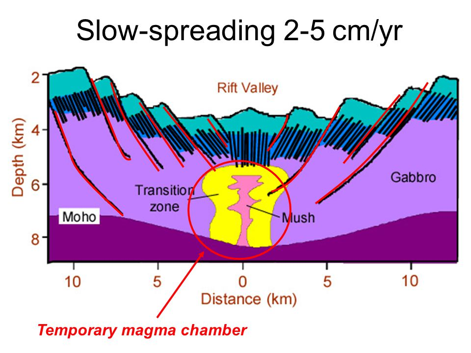 Slow-spreading 2-5 cm/yr Temporary magma chamber
