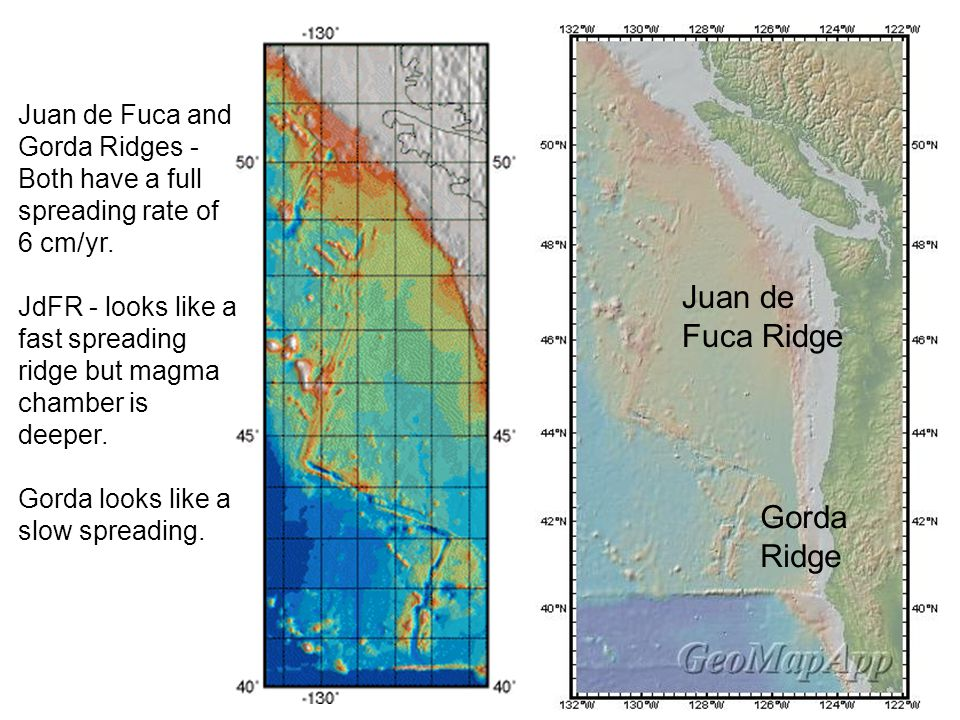 Juan de Fuca and Gorda Ridges - Both have a full spreading rate of 6 cm/yr. JdFR - looks like a fast spreading ridge but magma chamber is deeper. Gord