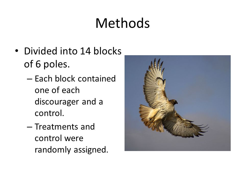 Methods Divided into 14 blocks of 6 poles.