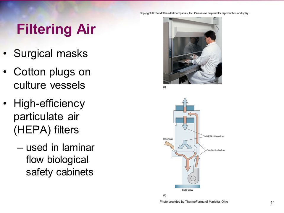 Physical Control Methods Heat –Moist heat –Steam: Autoclave –Pasteurization –Dry heat –Incineration Radiation –Ultraviolet (UV) –Ionizing (gamma) 15