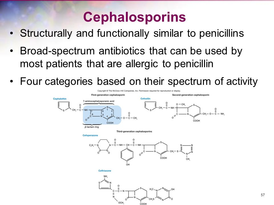 Cephalosporins Structurally and functionally similar to penicillins Broad-spectrum antibiotics that can be used by most patients that are allergic to
