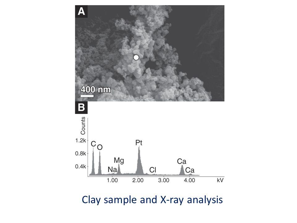 Clay sample and X-ray analysis