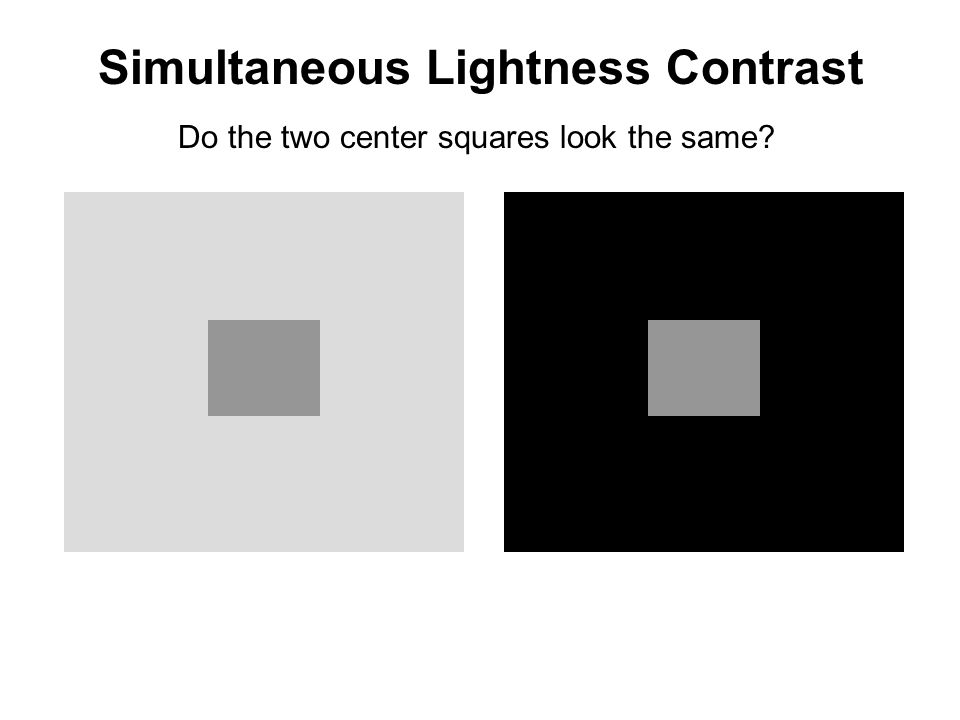 Simultaneous Lightness Contrast Do the two center squares look the same?