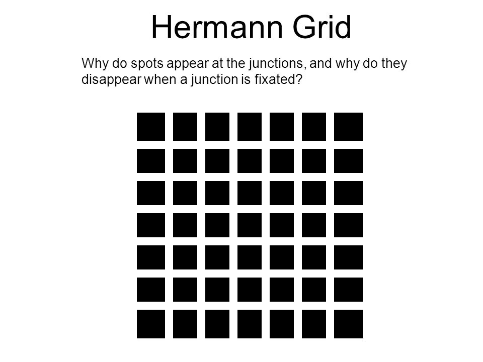 Hermann Grid Why do spots appear at the junctions, and why do they disappear when a junction is fixated?