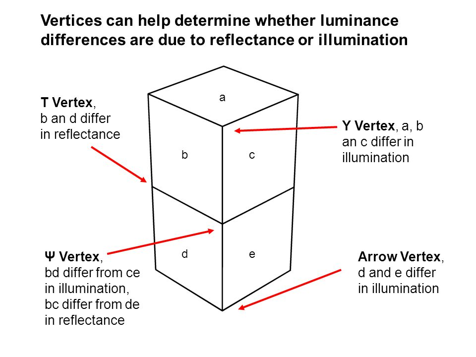 Arrow Vertex, d and e differ in illumination T Vertex, b an d differ in reflectance Y Vertex, a, b an c differ in illumination Vertices can help deter