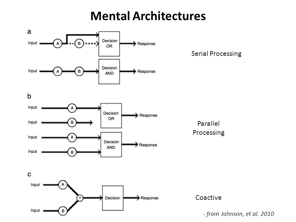 Mental Architectures Serial Processing Parallel Processing Coactive - from Johnson, et al. 2010