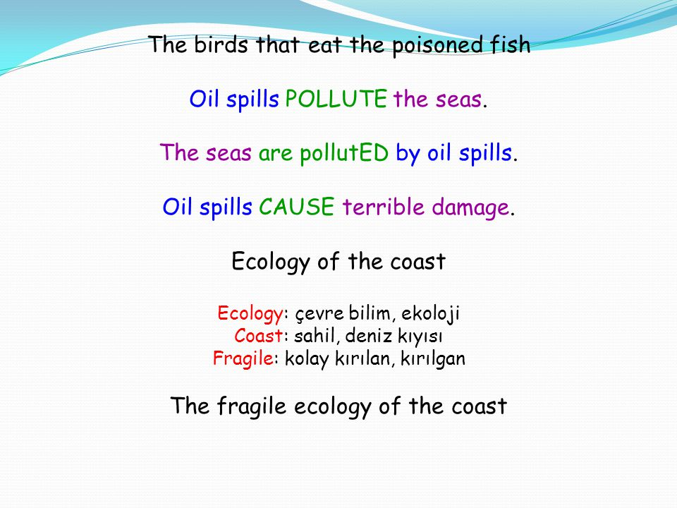 The birds that eat the poisoned fish Oil spills POLLUTE the seas.