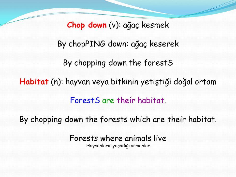 Chop down (v): ağaç kesmek By chopPING down: ağaç keserek By chopping down the forestS Habitat (n): hayvan veya bitkinin yetiştiği doğal ortam ForestS