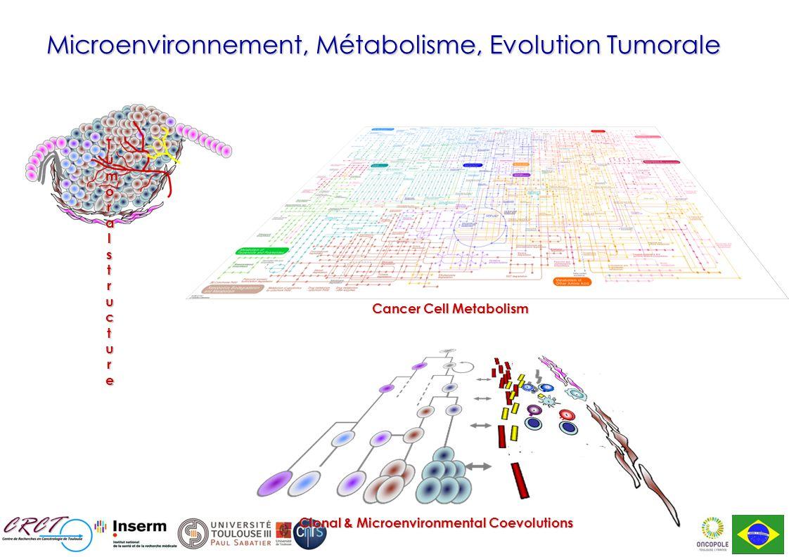 Microenvironnement, Métabolisme, Evolution Tumorale Cancer Cell Metabolism Cancer Cell Metabolism Clonal & Microenvironmental Coevolutions Tumoralstructure Tumoralstructure Tumoralstructure Tumoralstructure