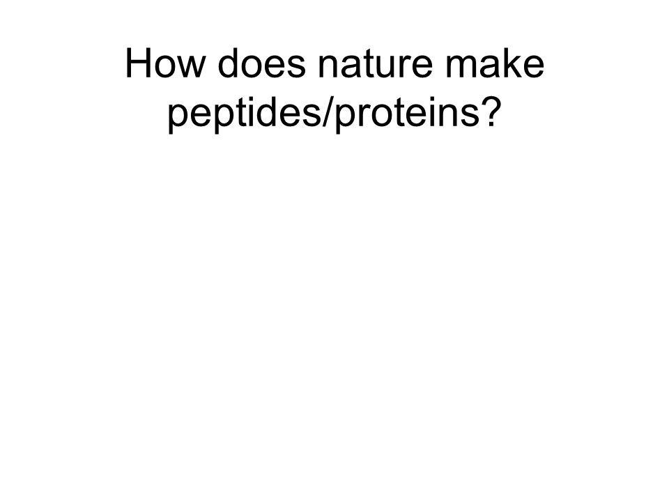 How does nature make peptides/proteins