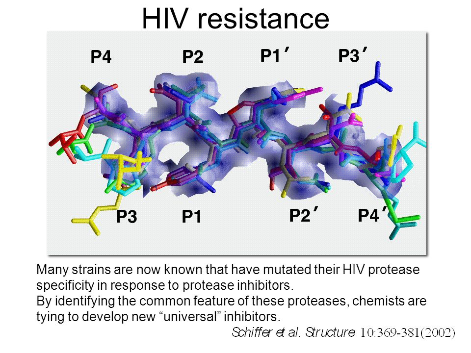 HIV resistance Many strains are now known that have mutated their HIV protease specificity in response to protease inhibitors.