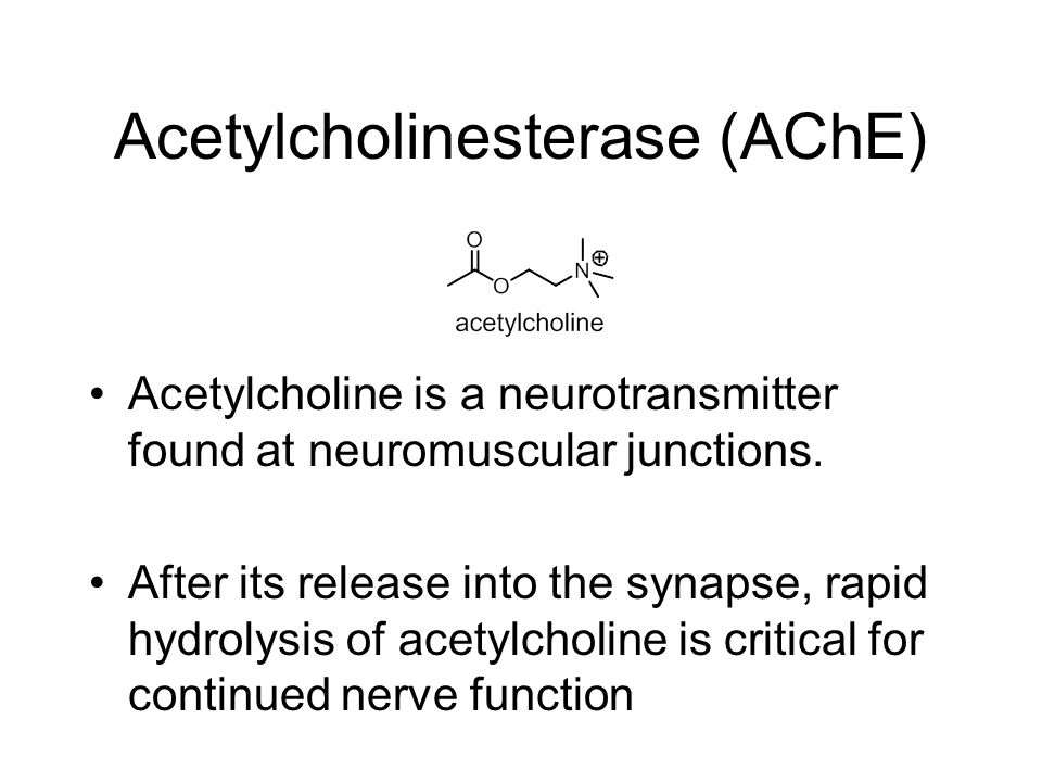 Acetylcholinesterase (AChE) Acetylcholine is a neurotransmitter found at neuromuscular junctions.