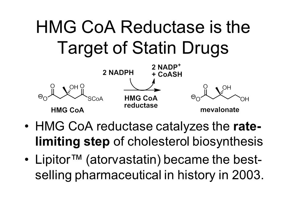 HMG CoA Reductase is the Target of Statin Drugs HMG CoA reductase catalyzes the rate- limiting step of cholesterol biosynthesis Lipitor™ (atorvastatin) became the best- selling pharmaceutical in history in 2003.