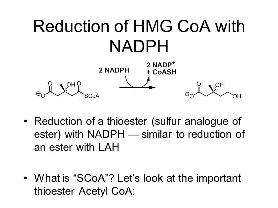 Reduction of HMG CoA with NADPH Reduction of a thioester (sulfur analogue of ester) with NADPH — similar to reduction of an ester with LAH What is SCoA .