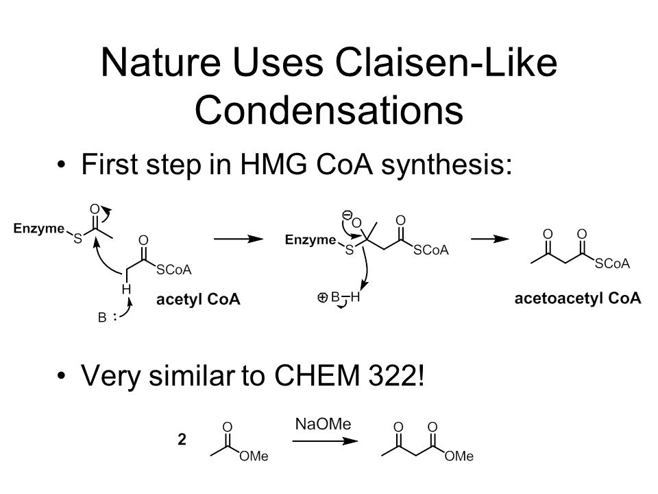 Nature Uses Claisen-Like Condensations First step in HMG CoA synthesis: Very similar to CHEM 322!