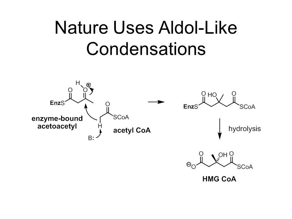 Nature Uses Aldol-Like Condensations