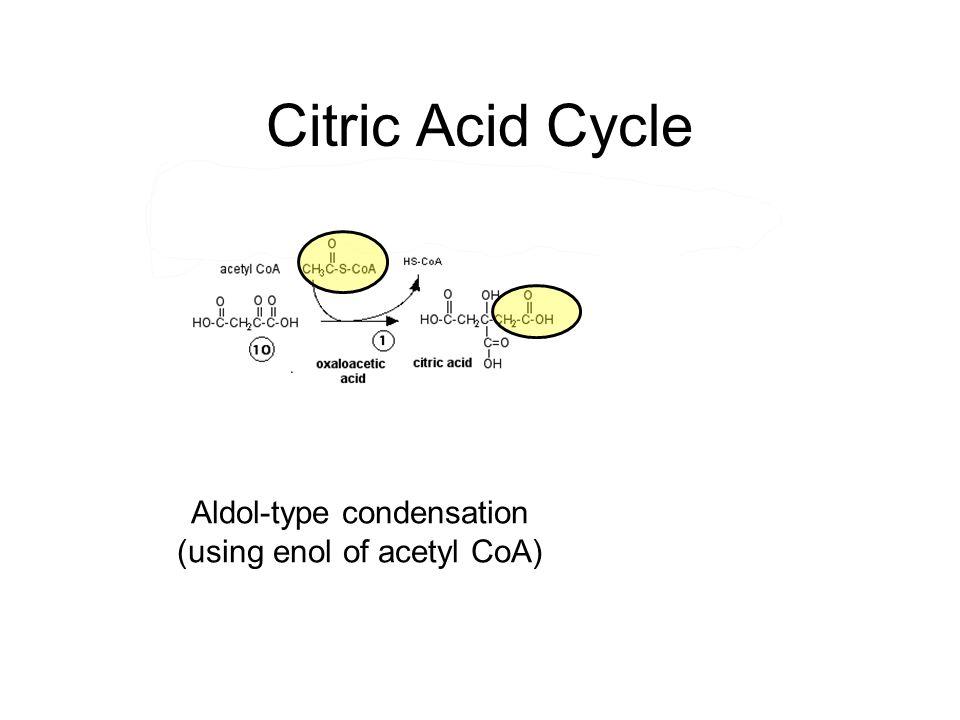 Aldol-type condensation (using enol of acetyl CoA)