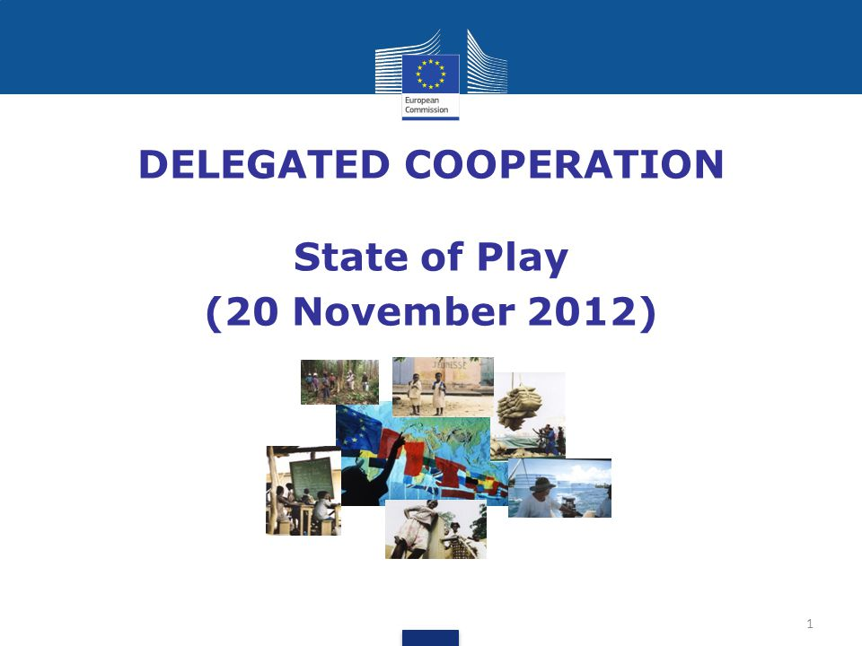 DELEGATED COOPERATION State of Play (20 November 2012) 1