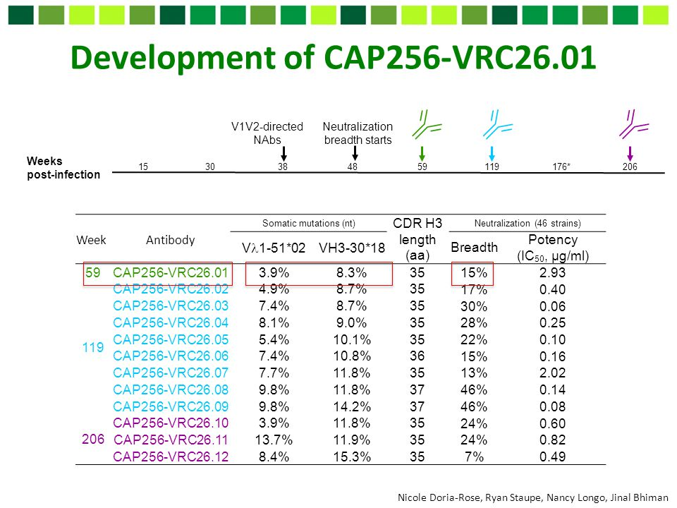 Development of CAP256-VRC26.01 Nicole Doria-Rose, Ryan Staupe, Nancy Longo, Jinal Bhiman Weeks post-infection V1V2-directed NAbs 15 30 38 48 59 119 17