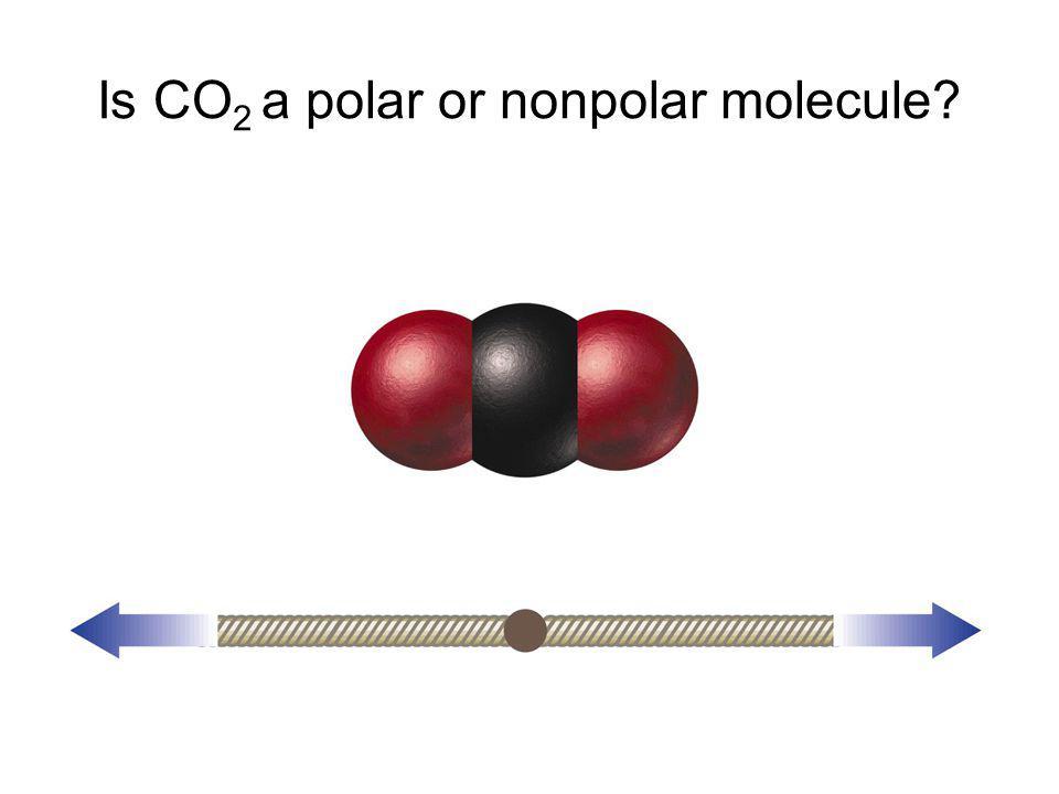 Is CO 2 a polar or nonpolar molecule?