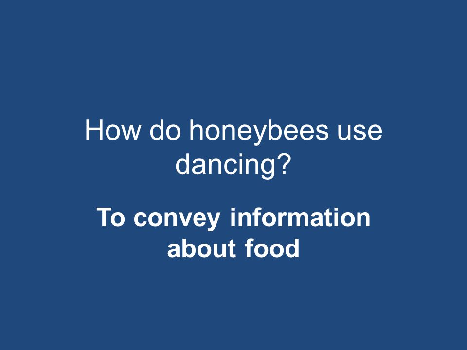 How do honeybees use dancing? To convey information about food