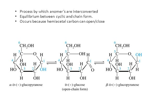 Process by which anomer's are interconverted Equilibrium between cyclic and chain form. Occurs because hemiacetal carbon can open/close