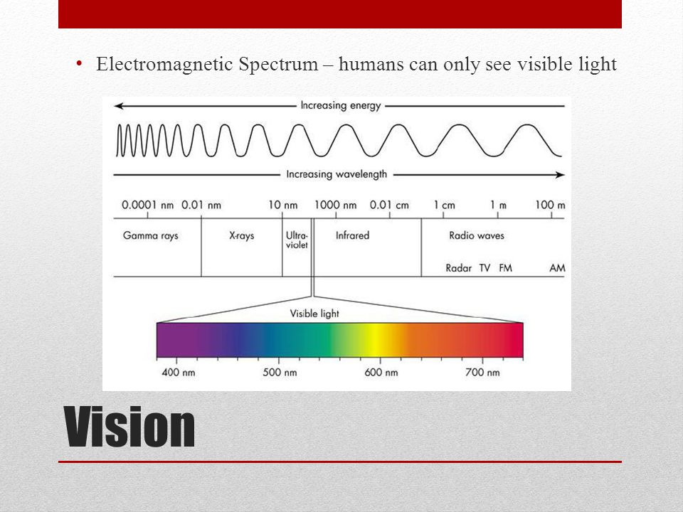 Vision Electromagnetic Spectrum – humans can only see visible light