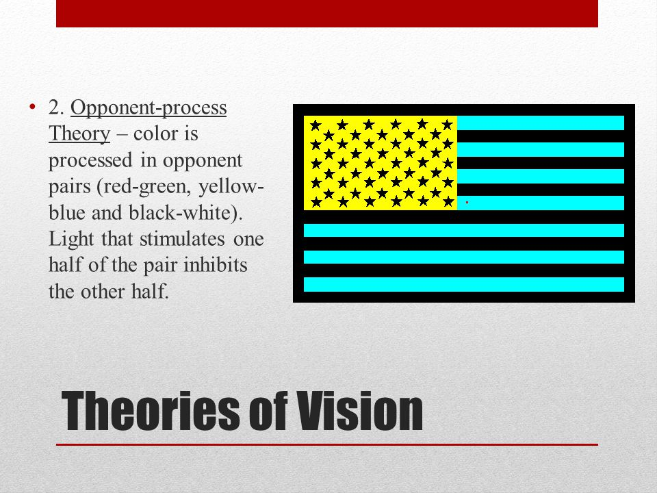 Theories of Vision 2. Opponent-process Theory – color is processed in opponent pairs (red-green, yellow- blue and black-white). Light that stimulates