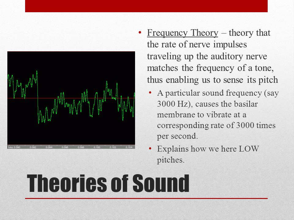 Theories of Sound Frequency Theory – theory that the rate of nerve impulses traveling up the auditory nerve matches the frequency of a tone, thus enab