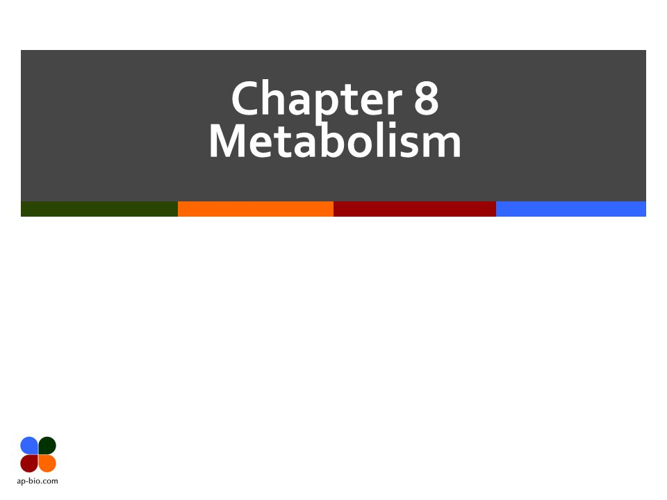 Chapter 8 Metabolism