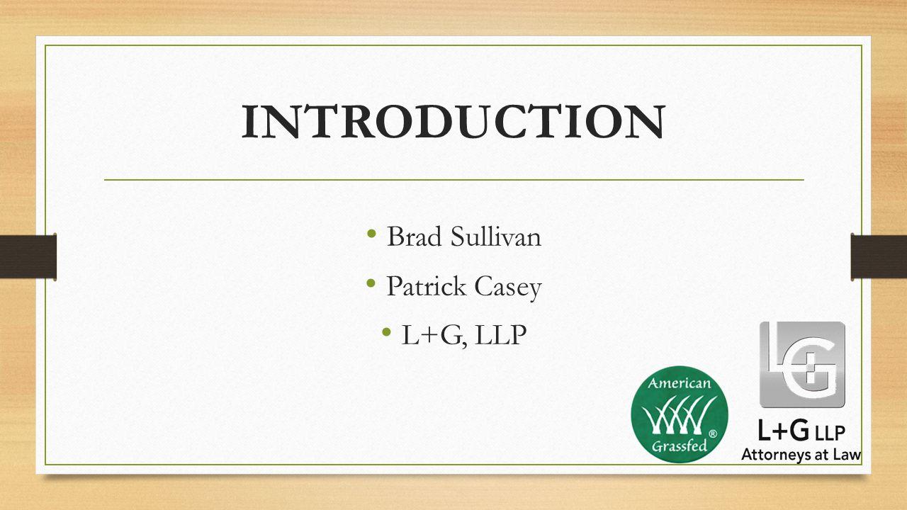 INTRODUCTION Brad Sullivan Patrick Casey L+G, LLP