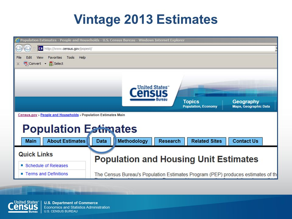 Vintage 2013 Estimates