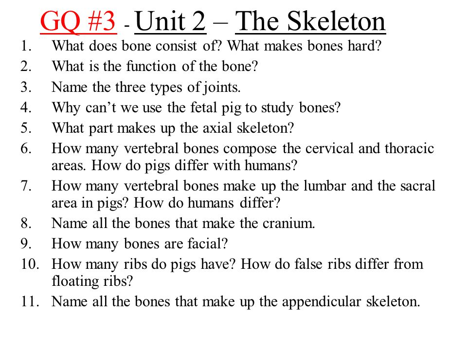 GQ #3 - Unit 2 – The Skeleton 1.What does bone consist of? What makes bones hard? 2.What is the function of the bone? 3.Name the three types of joints