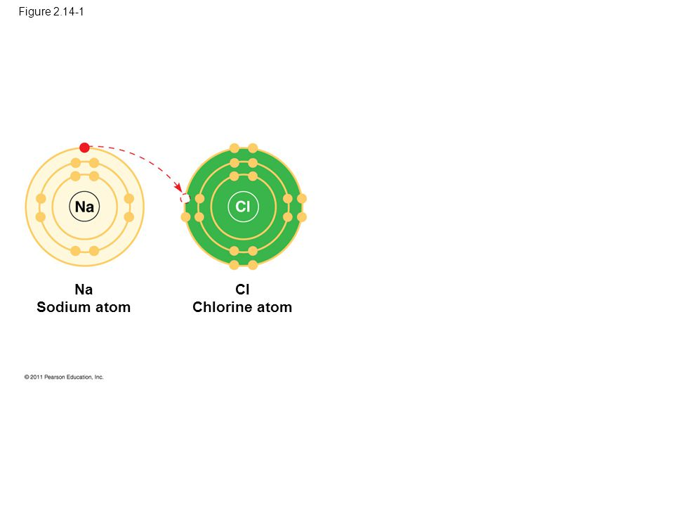 Figure 2.14-1 Na Sodium atom Cl Chlorine atom