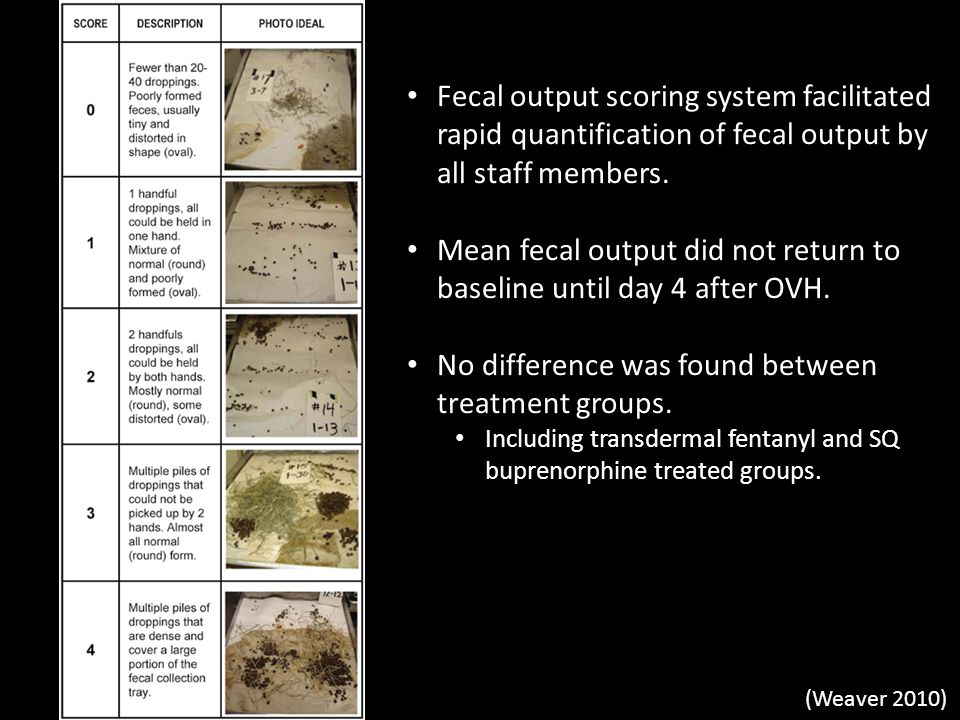 Fecal output scoring system facilitated rapid quantification of fecal output by all staff members. Mean fecal output did not return to baseline until
