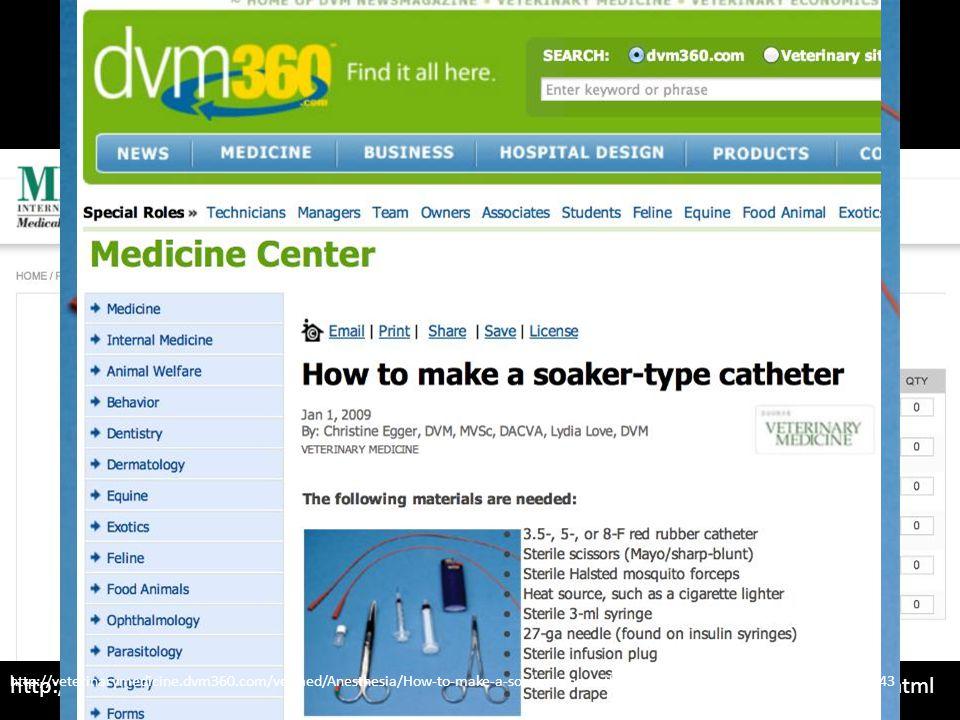Regional Analgesia http://milainternational.com/mila-products/catheters/diffusion-catheter-wound-catheter.html http://veterinarymedicine.dvm360.com/ve