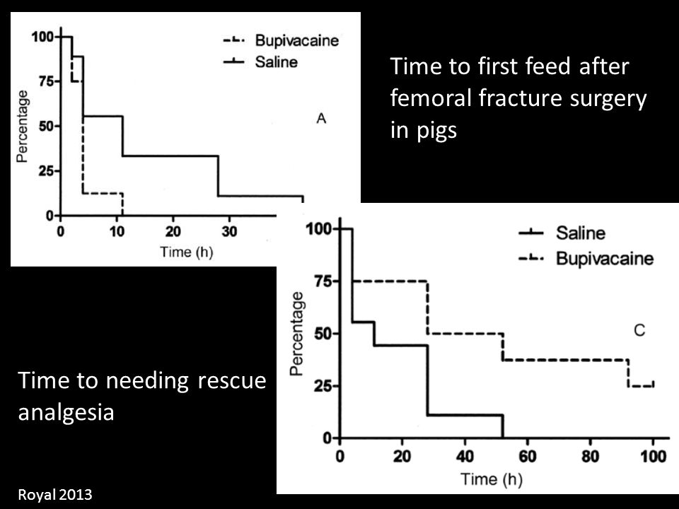 Time to first feed after femoral fracture surgery in pigs Time to needing rescue analgesia Royal 2013