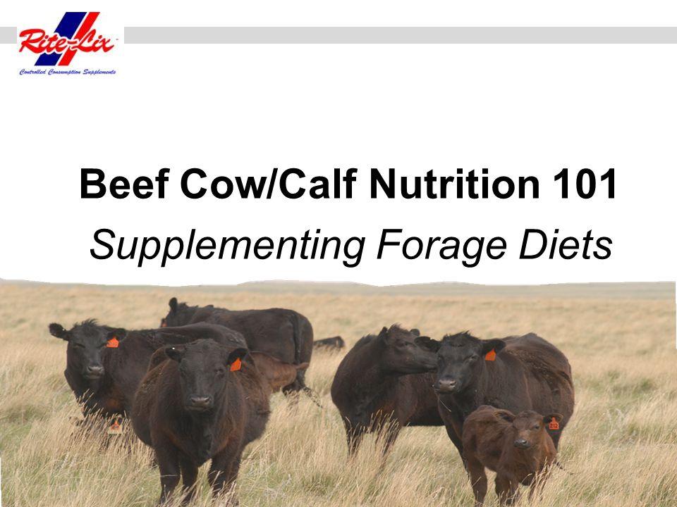 Cow/Calf nutrition programs should optimize resources for Cow-Calf Production