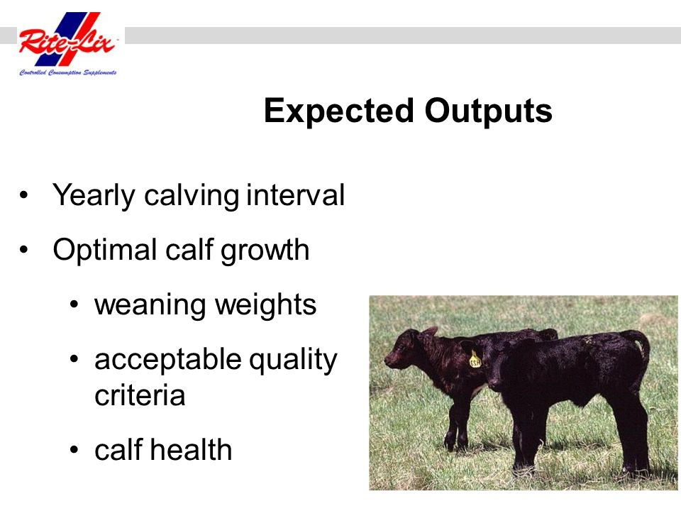 Dry Matter IntakeCrude Protein Total Digestible Nutrients Forage, lb.221.5410.56 20% Rite-Blox, lb.2.00.401.40 TOTAL24.0 lbs.1.9411.96 Cow Requirements1.7511.9 Rite-Blox 20% Compressed Block 2.00 lb.