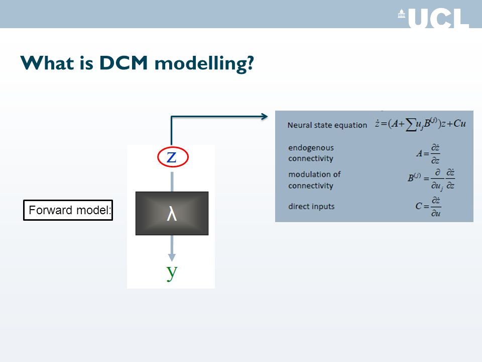 What is DCM modelling Forward model: