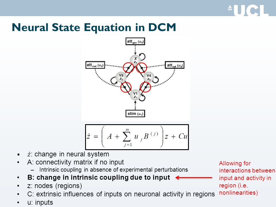 Neural State Equation in DCM Allowing for interactions between input and activity in region (i.e.