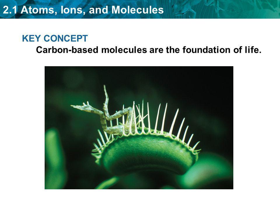 2.1 Atoms, Ions, and Molecules Carbon atoms have unique bonding properties.