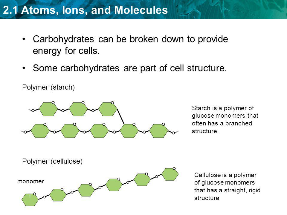 2.1 Atoms, Ions, and Molecules –Many contain carbon chains called fatty acids.