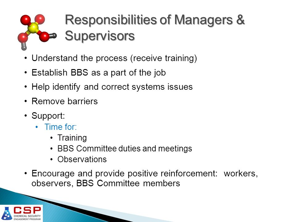 Responsibilities of Managers & Supervisors Understand the process (receive training) Establish BBS as a part of the job Help identify and correct systems issues Remove barriers Support: Time for: Training BBS Committee duties and meetings Observations Encourage and provide positive reinforcement: workers, observers, BBS Committee members