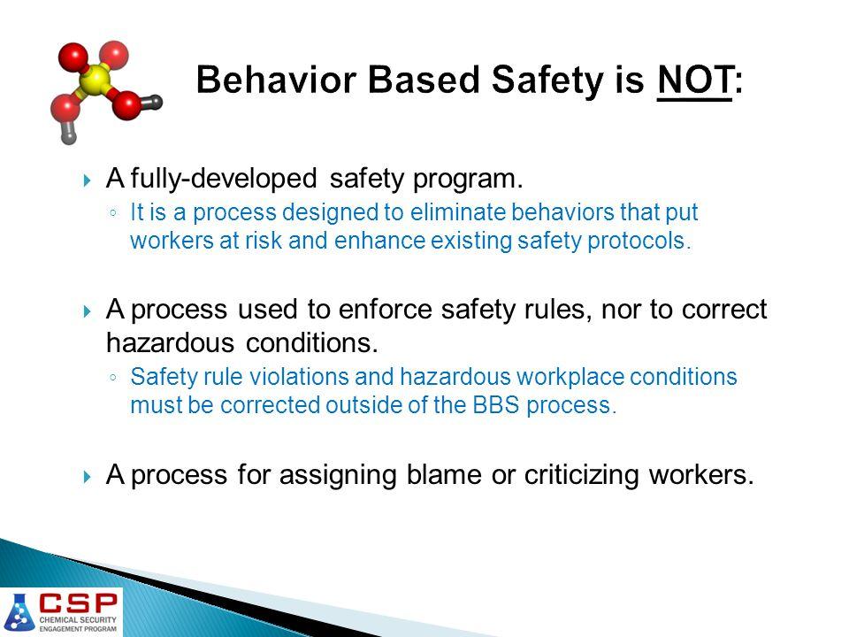  A fully-developed safety program.