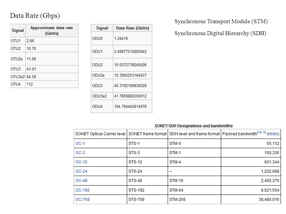 Data Rate (Gbps) Synchronous Digital Hierarchy (SDH) Synchronous Transport Module (STM)