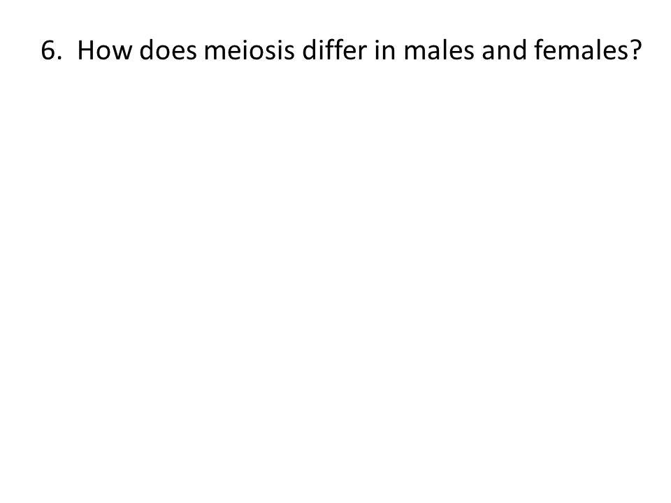 6. How does meiosis differ in males and females?